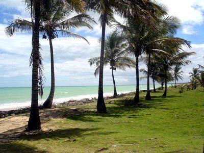 Bahia Terrano