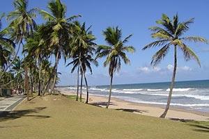 Flamenco Praia