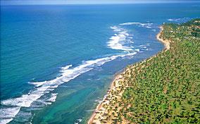 Praia do Forte Imobiliário