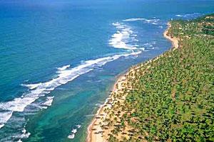 Praia Do Forte Ver