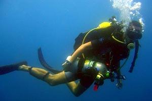 Scuba Diving Busca Vida
