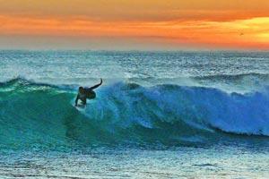 Surfing Busca Vida
