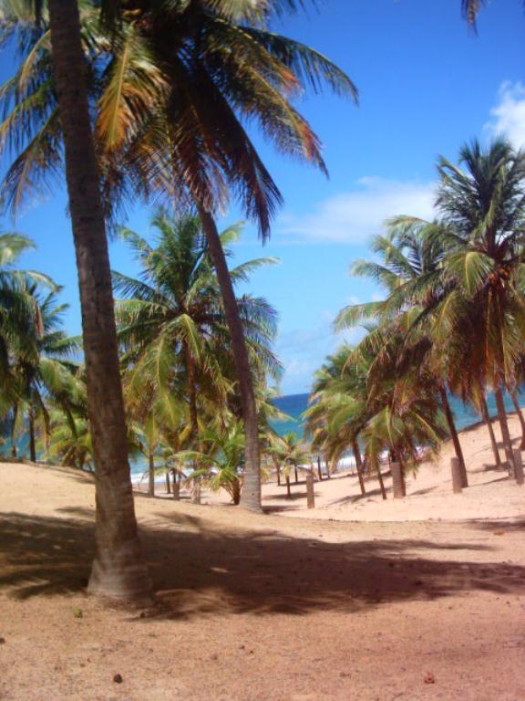 Large Lot Beira Mar 5