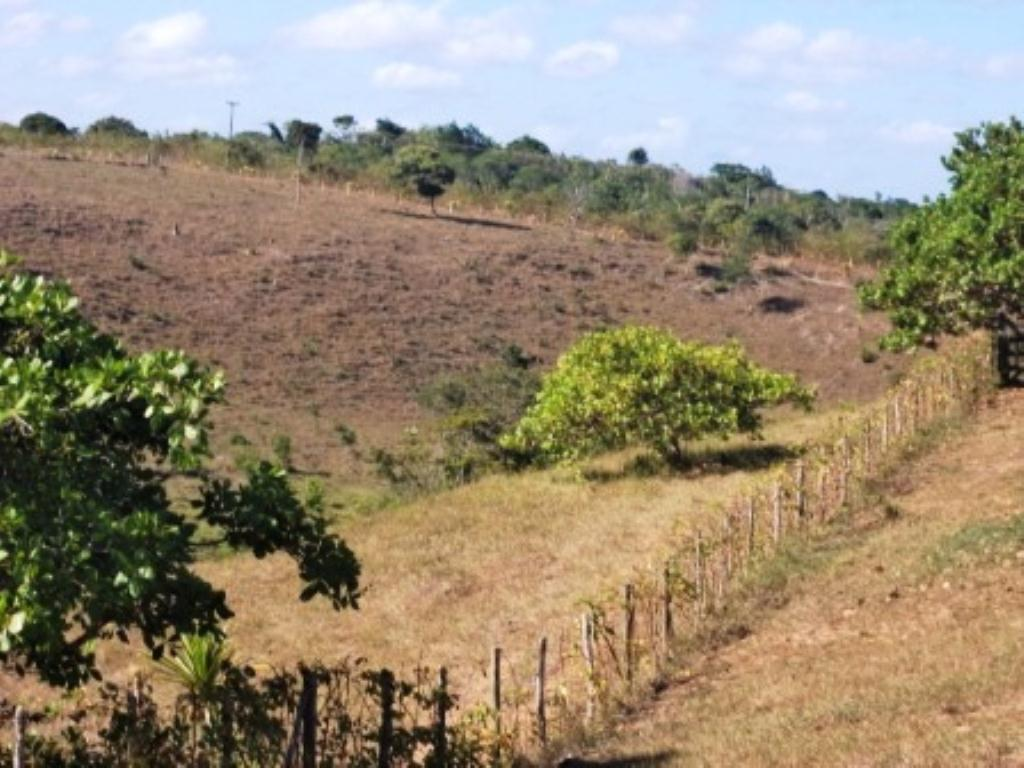 Linda fazenda em Arembepe 12