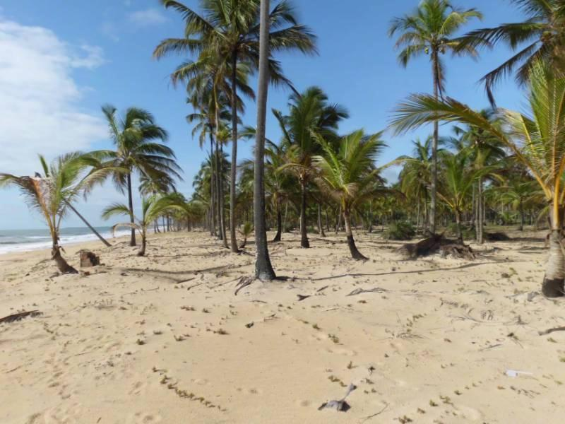 Terreno Beira Mar Em  2