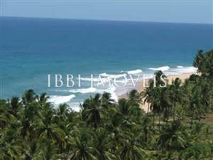 Marau Peninsula 6,462m2 Land For Sale