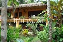Bela Casa Em Um Cenário Tropical