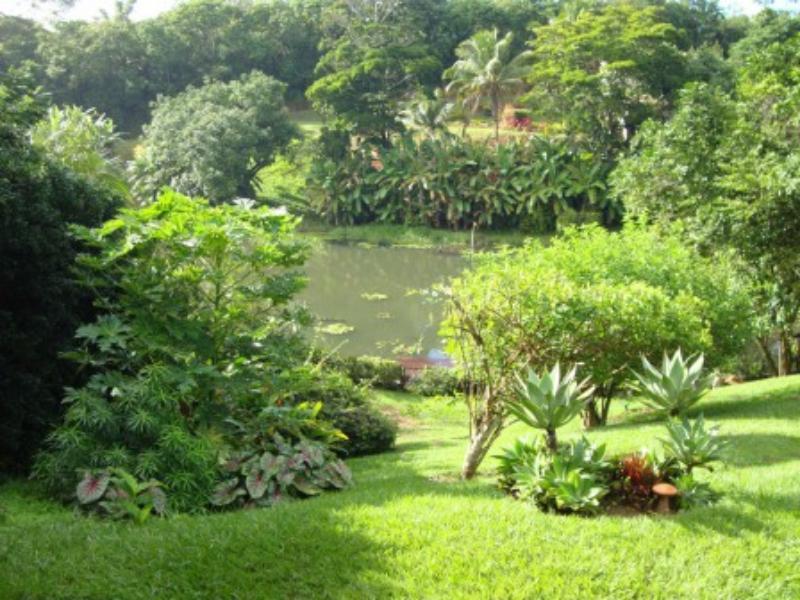 Fantastic home in the Encontro das Águas 10