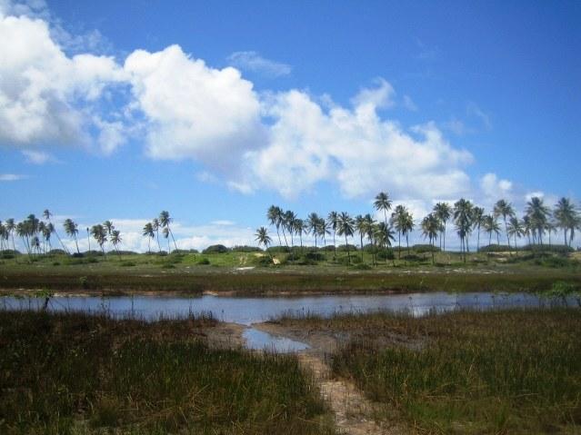 Área 51 hectares Beira-mar 5