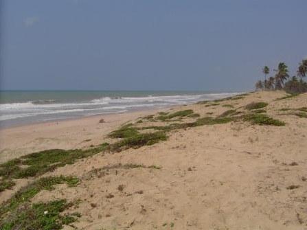 7 hectares Beira-mar 2