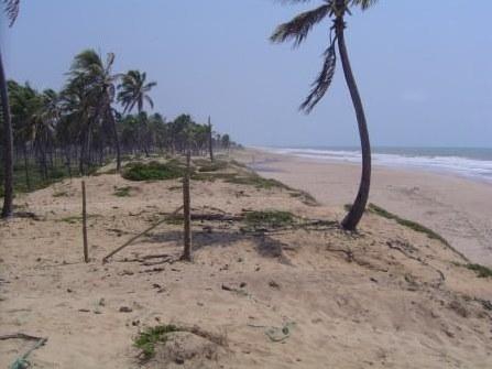7 hectares Beira-mar 3