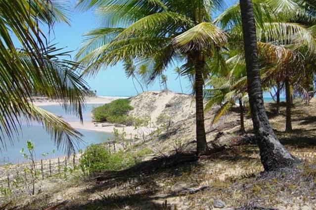 Área na Península 4