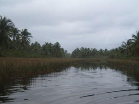 Zona mare con 70 ettari 5