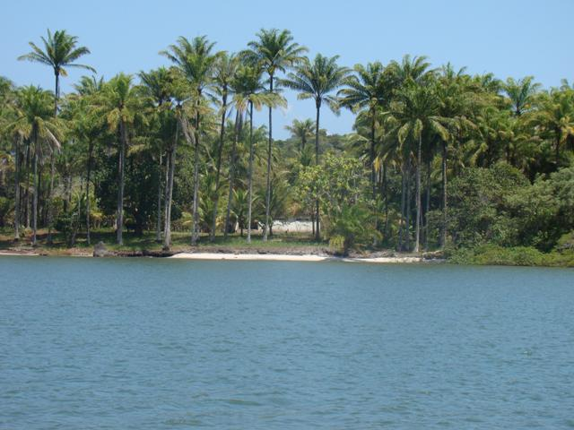 Ilha Próxima À Península De Camamu 1