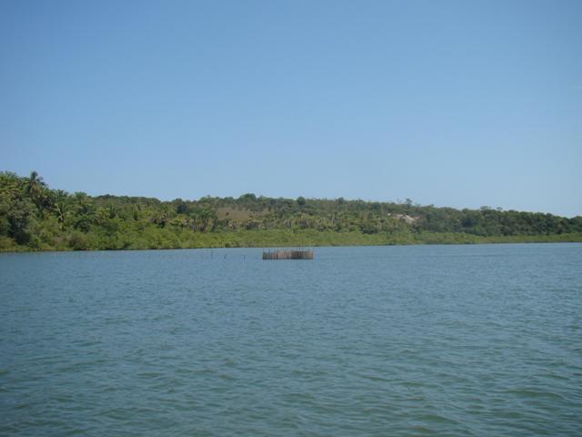 Ilha próxima à Península de Camamu 8