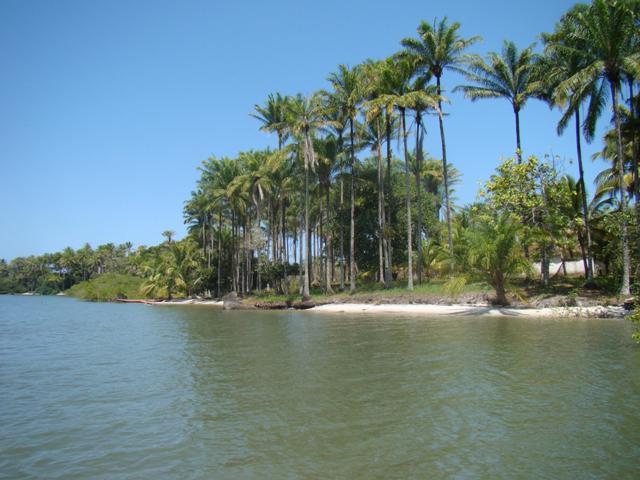 Ilha próxima à Península de Camamu 9