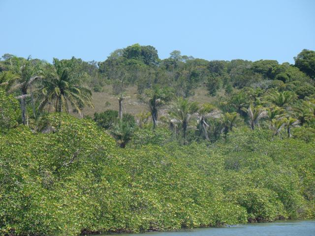Island, cerca de la Península de Camamu 4