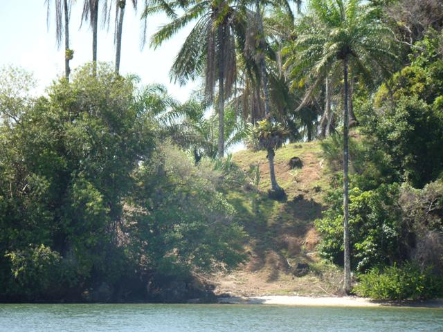 Isla tropical ubicado en Camamú 5