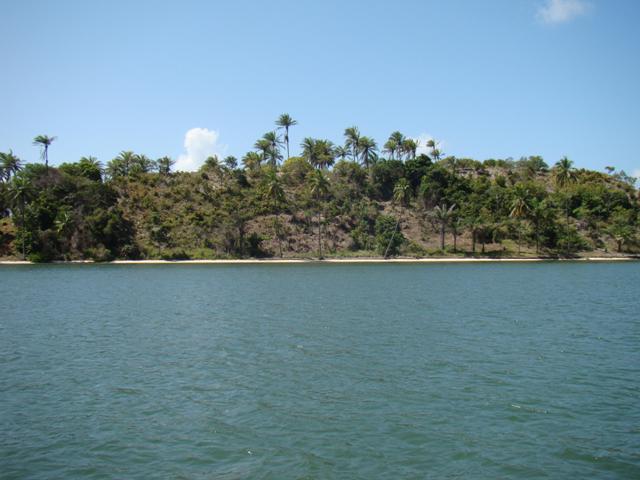 Ilha Tropical Localizada Em  6