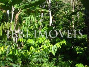 Farm with 32 hectares in Una in Bahia