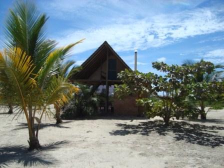 La tierra en la paradisíaca isla 9