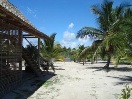 La tierra en la paradisíaca isla 8