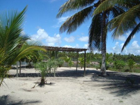 Land on the island Paradisiacal 6