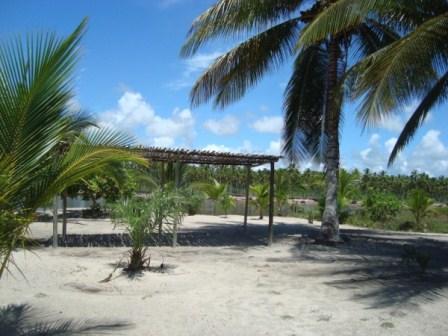 La tierra en la paradisíaca isla 6