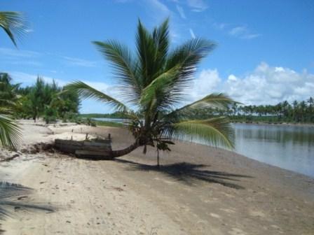 La tierra en la paradisíaca isla 4