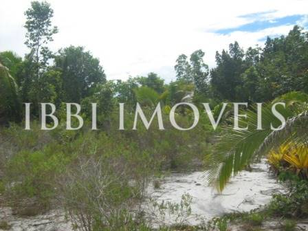 Farm 113 hectares next to Belmonte 2