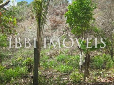 Agriturismo 113 ettari vicino a Belmonte 6