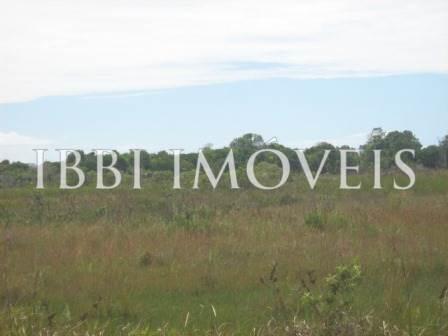 Agriturismo 113 ettari vicino a Belmonte 8