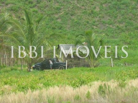 Farm 113 hectares next to Belmonte 1