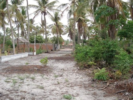 Terrenos Próximos A Quarta Praia 4