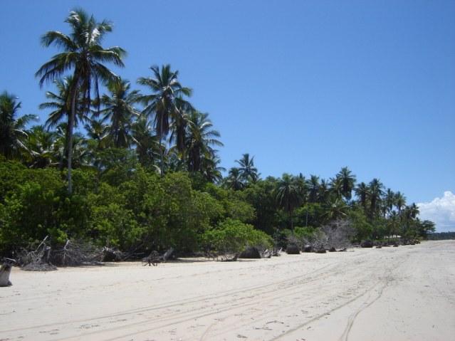 Quinta Praia 5