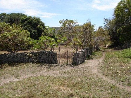 Plot with 2450m2 in Chapada Diamantina 3