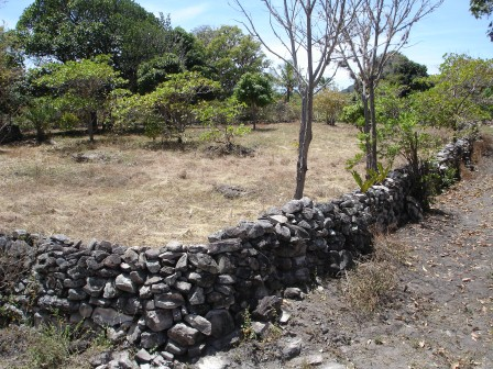 Plot with 2450m2 in Chapada Diamantina 6