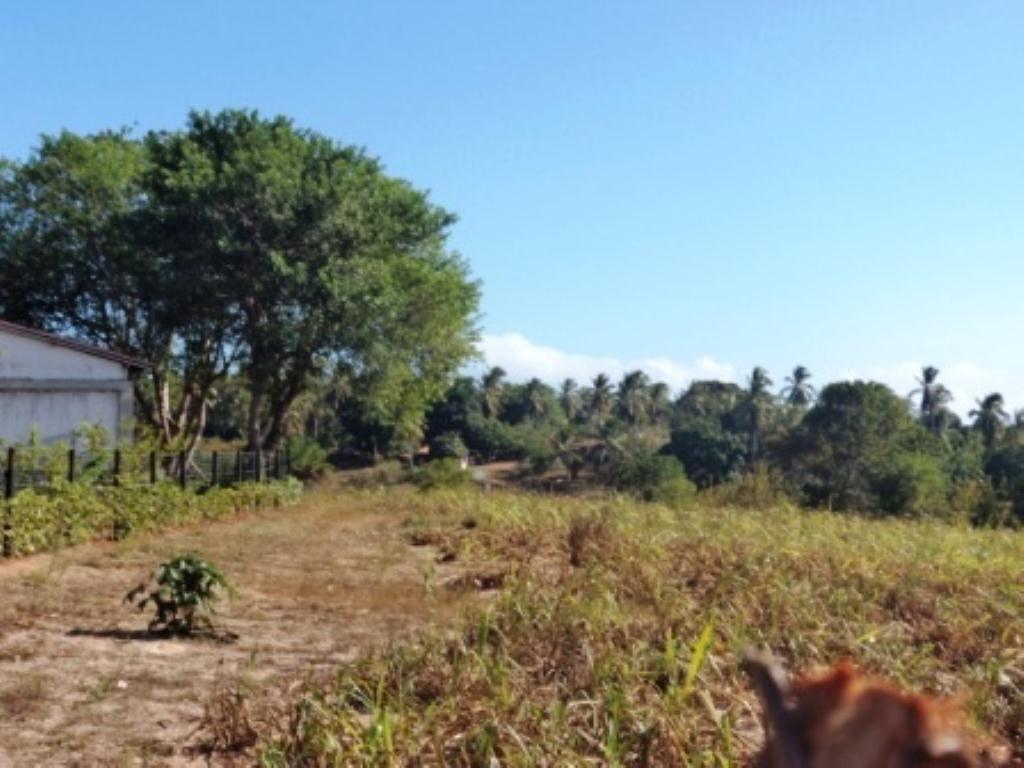Linda fazenda em Arembepe 13