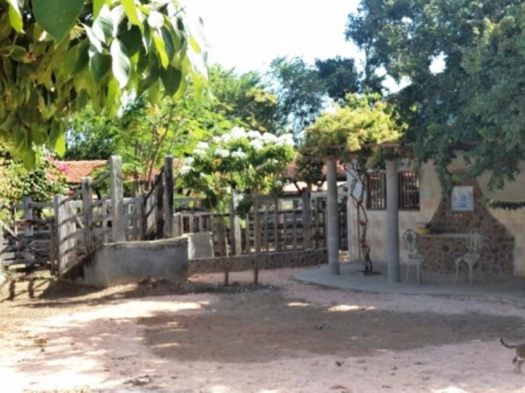 Linda fazenda em Arembepe 6
