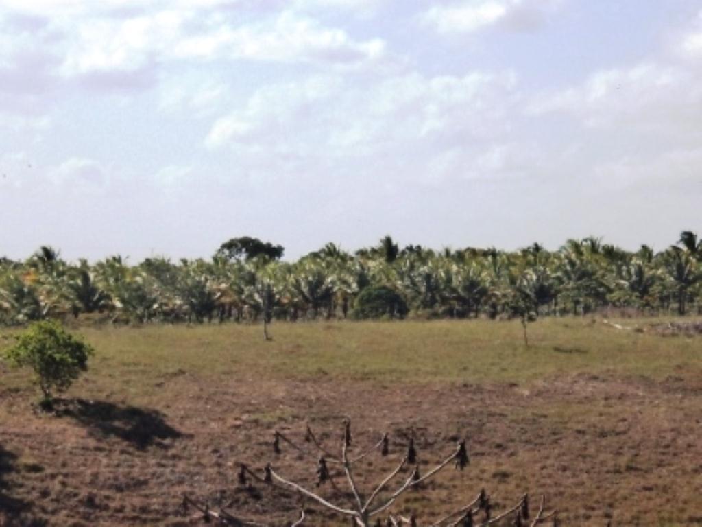 Linda fazenda em Arembepe 10