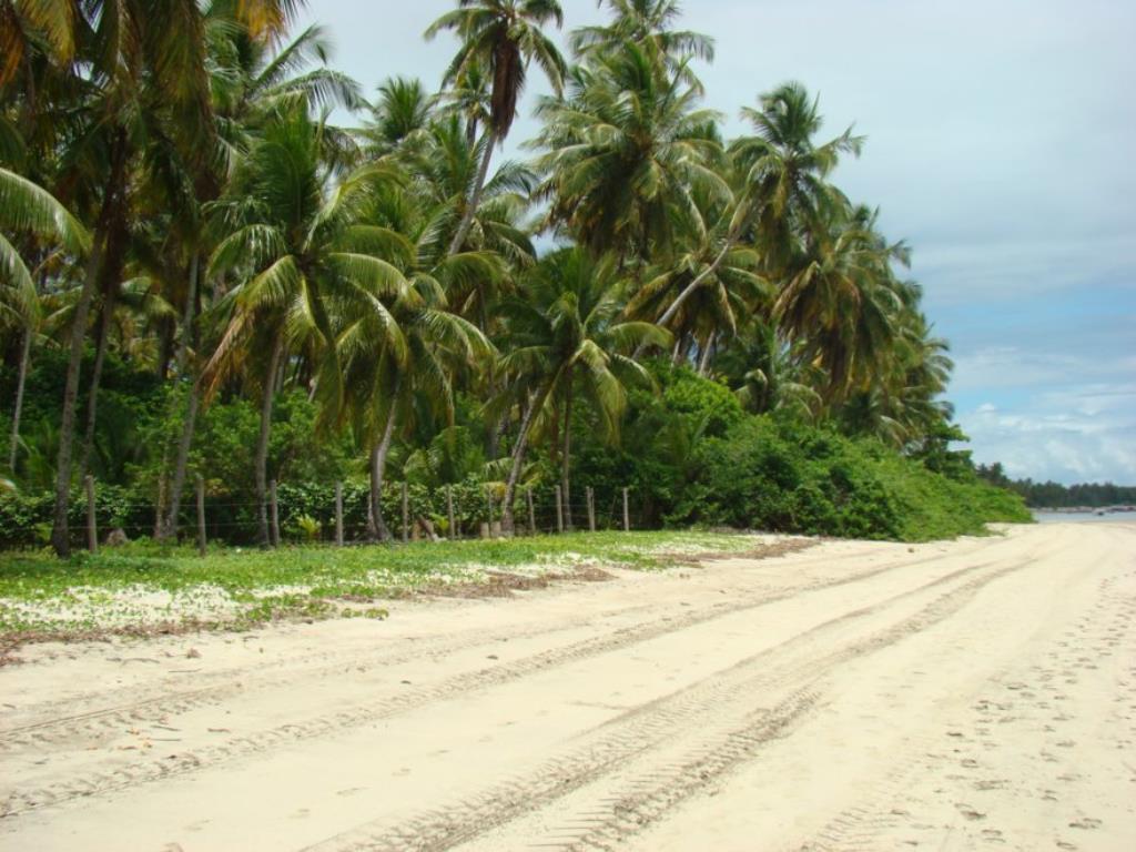 Ampla Área Próximo À Praia 8