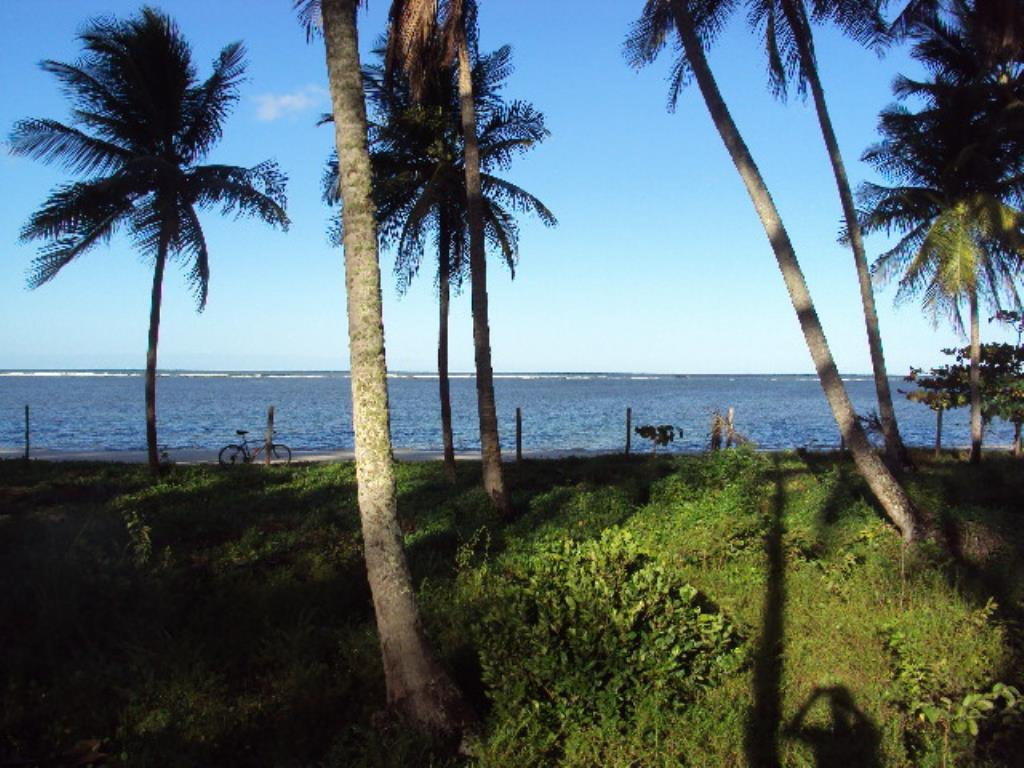 Ampla Área Próximo À Praia 4