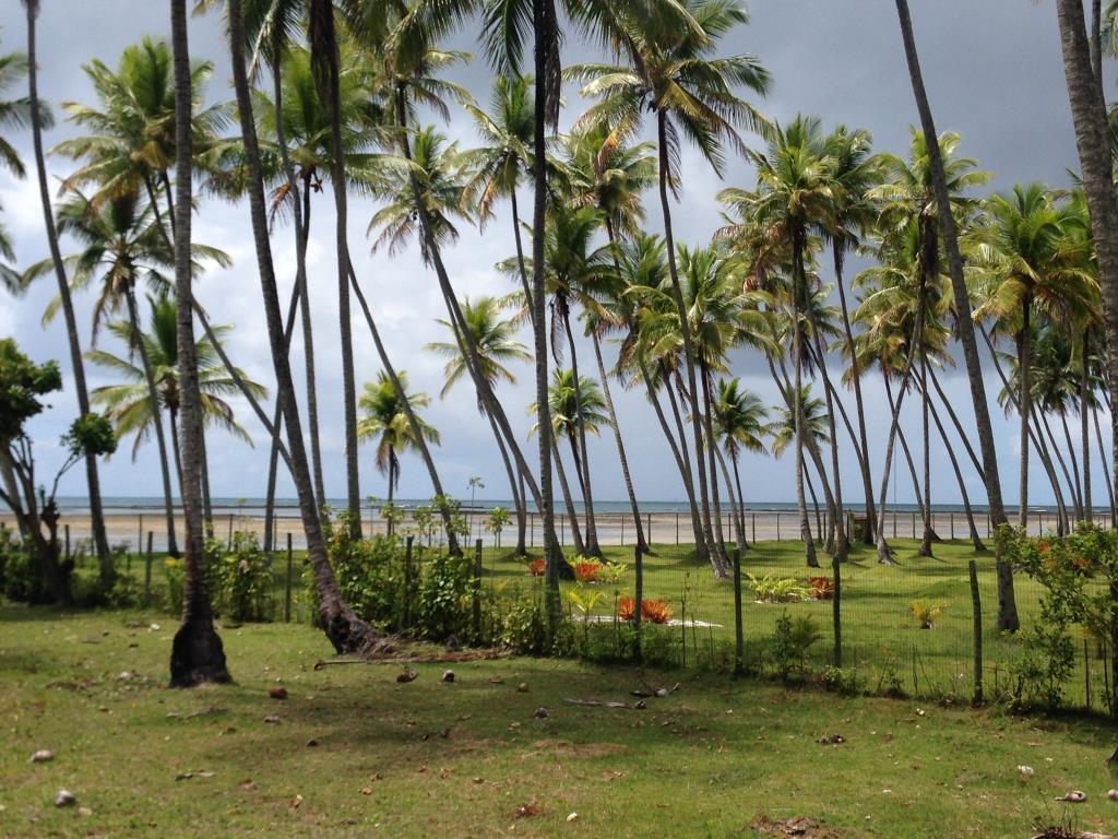 Ampla Área Próximo À Praia 9