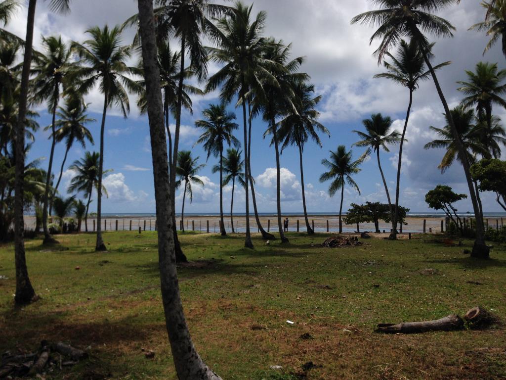 Ampla Área Próximo À Praia 12