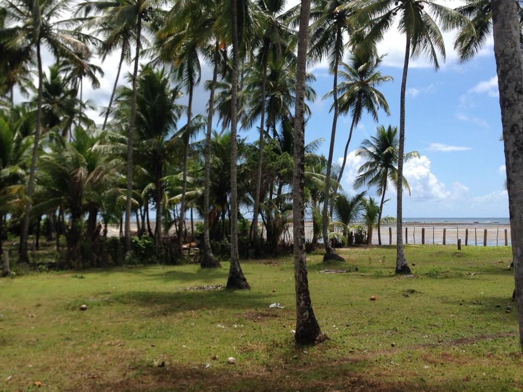 Ampla Área Próximo À Praia 14