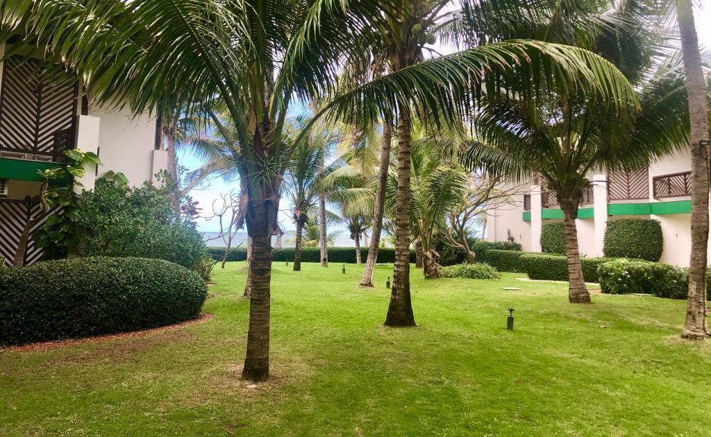 Trimming In Condominium 50m From The Beach 5