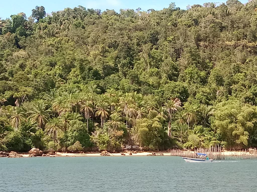 8000M Area With Sea Front Villa 3