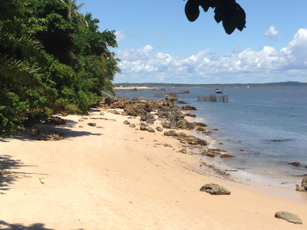 Área Frente Mar 1