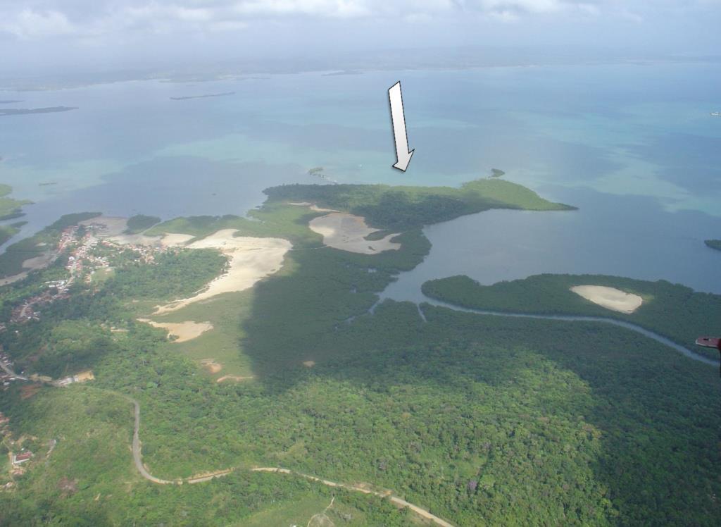 Belíssima Ilha Com Excelente Potencial De Desenvolvimento 8