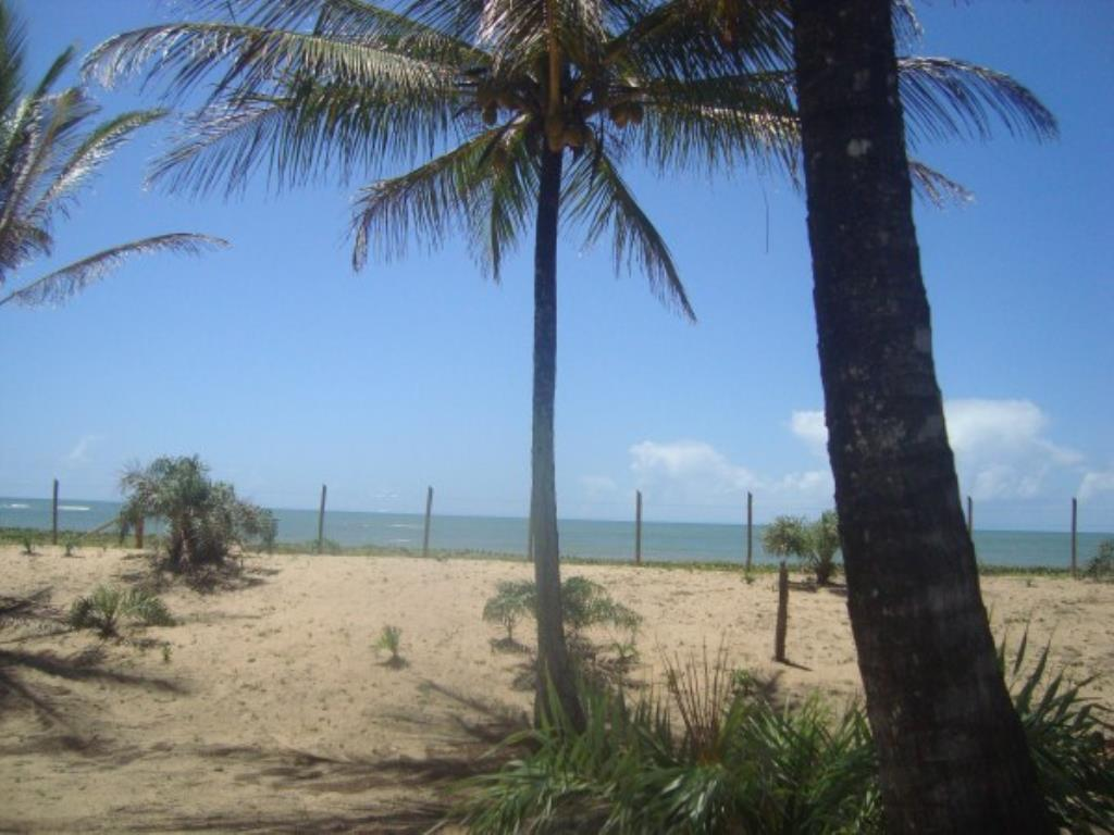 Beautiful 3,000m² site Foot In The Sand With Wide Area In Mogiquiçaba 1